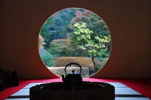 鎌倉明月院本堂後庭園