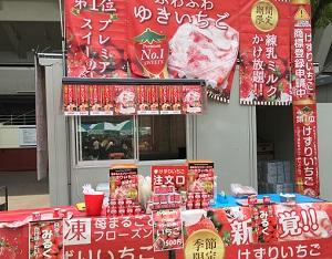 横浜開港祭バザーゆきいちご