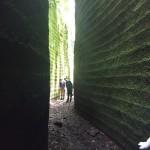 千葉・鋸山アドベンチャーコースハイキング!登山地図とアクセス