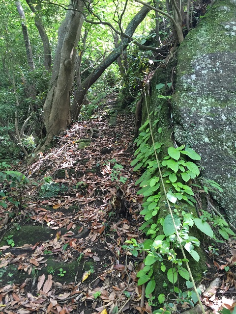 鋸山アドベンチャーコース壁階段