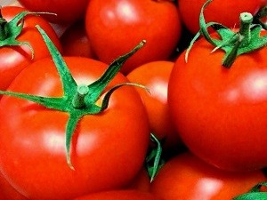 夏バテ食材トマト