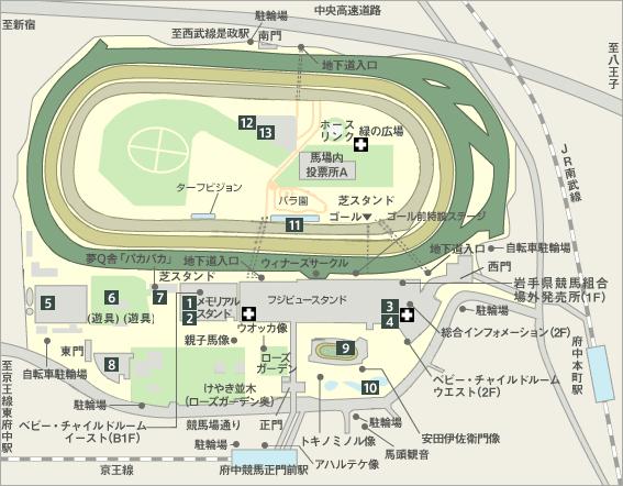 東京競馬場見取図