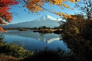 富士鳴沢紅葉ロードレース