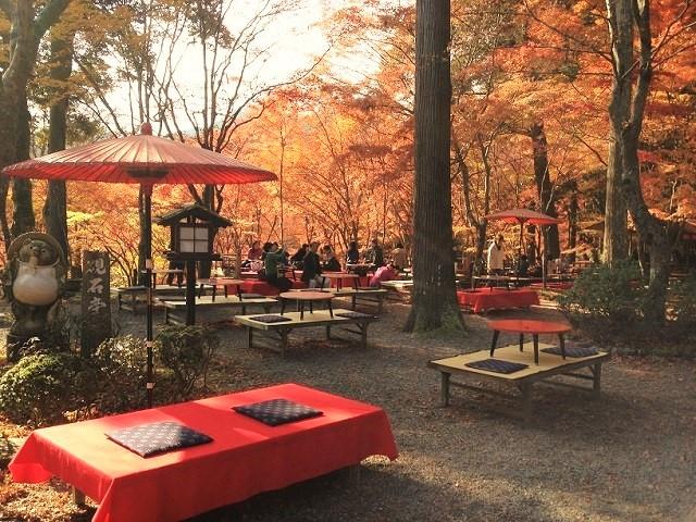 京都高雄神護寺紅葉