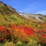 北海道大雪山国立公園の紅葉の見ごろ情報!旭岳・黒岳・高原温泉など