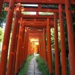 根津神社の初詣の混雑予想と参拝時間2017!屋台の出店はいつまで?