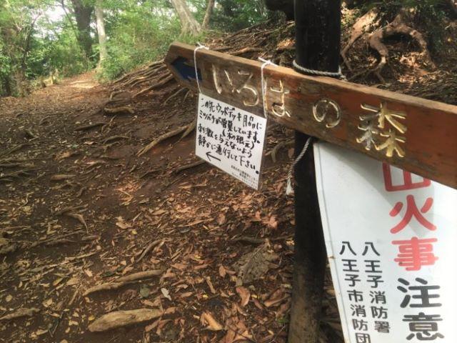 高尾山いろはの森入口看板