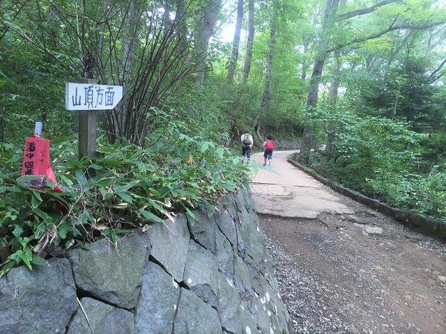 高尾山舗装路