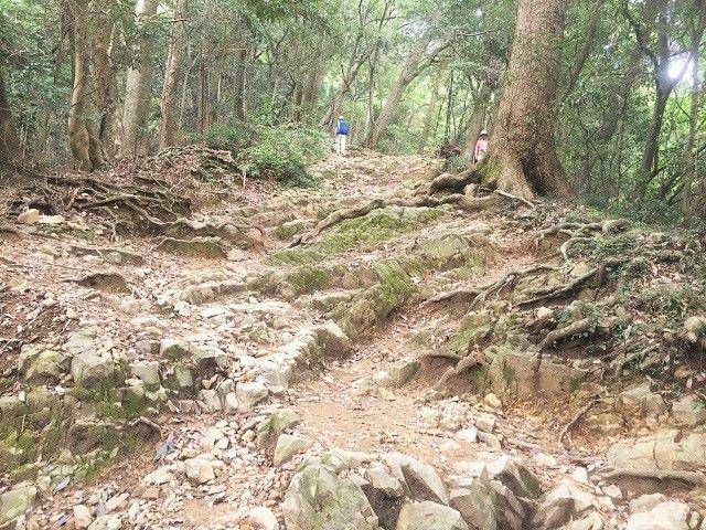 高尾山上級者コース岩場