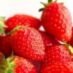 イチゴ狩り千葉県のおすすめ農園!食べ放題時間無制限ランキング7選