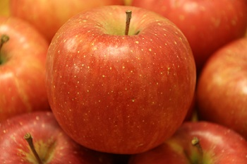 ふるさと納税りんごおすすめ